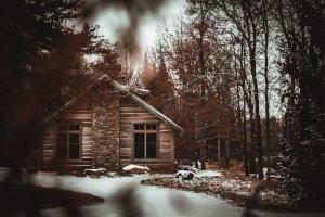 Cabin Insurance in Minnesota